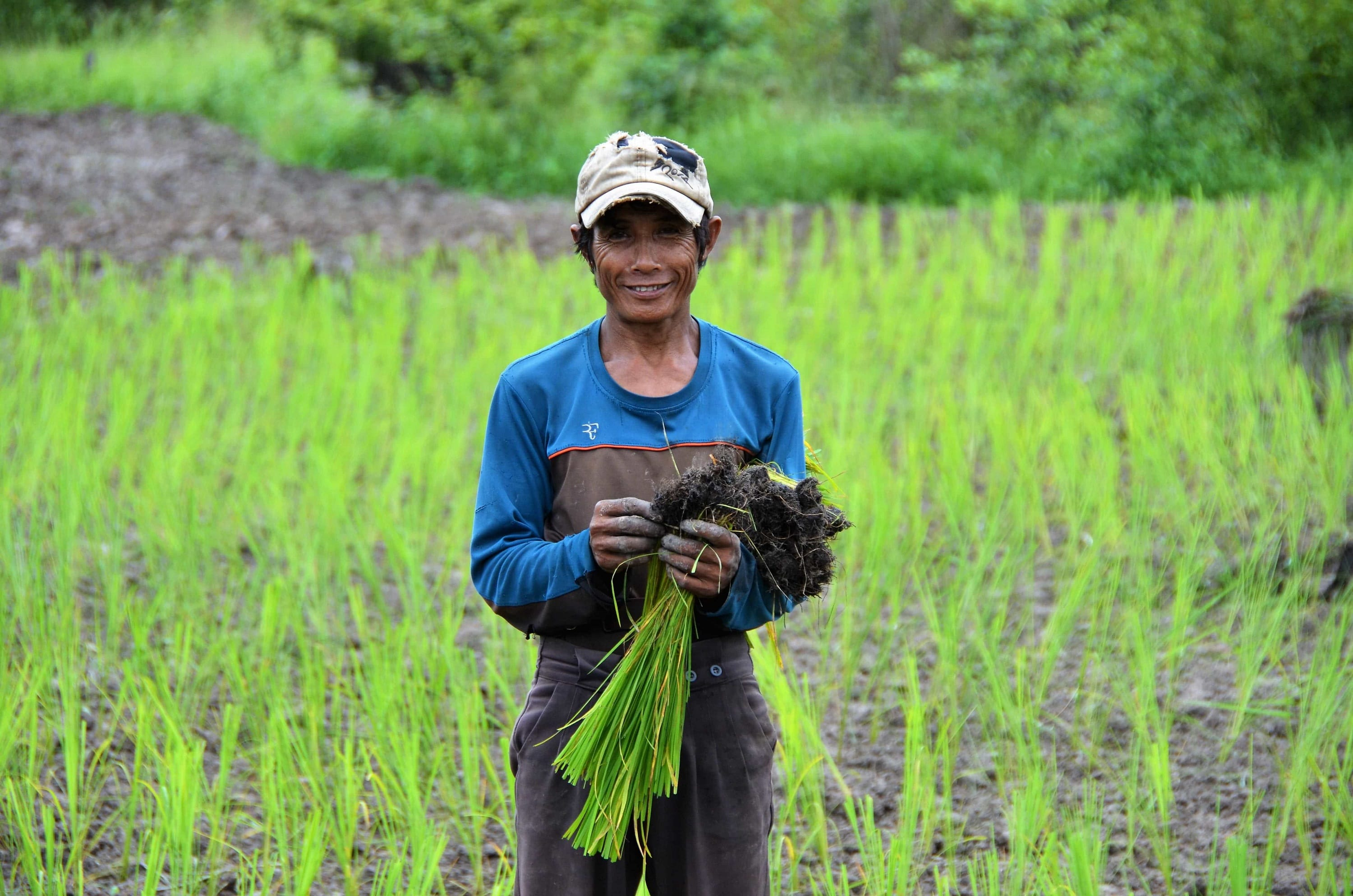 This Laotian farmer can cultivate his field again